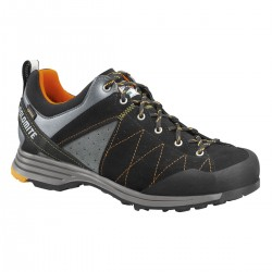 Steinbock Low GTX 2.0, black