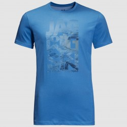 Atlantic Ocean T, wave blue