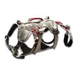 DoubleBack Harness, graphite gray / Herren